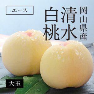 【限定1名さま】 岡山県産 清水白桃